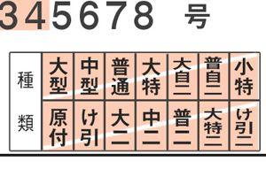 記事番号:29838/アイテムID:503472の画像